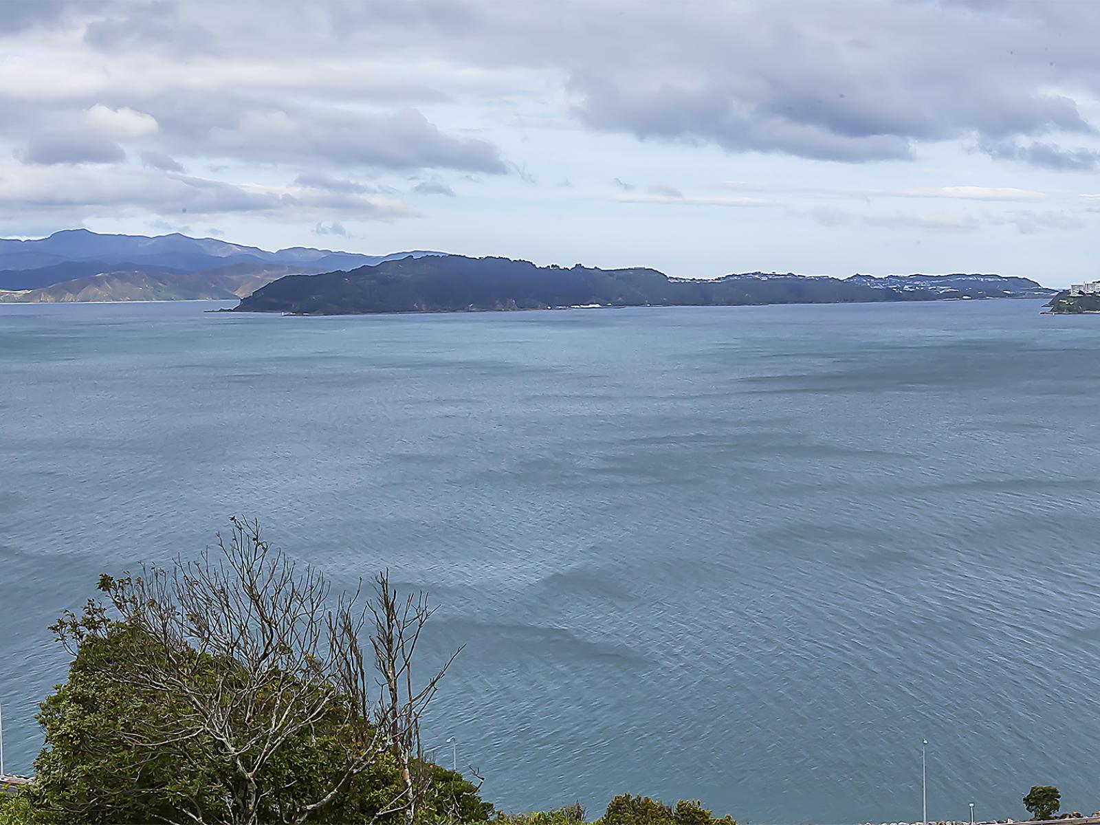 15 Sovereign Point, Kaiwharawhara